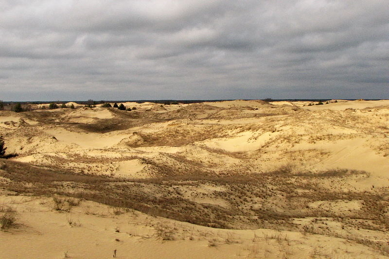 Олешковские пески — пустыня в Украине