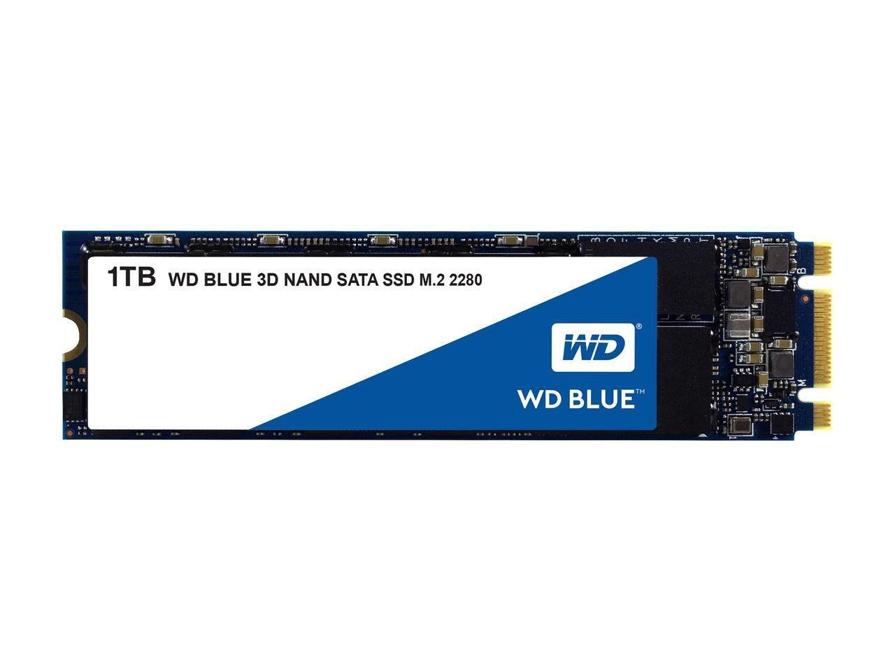 Amazon.in: Buy Western Digital WD Blue m.2 SSD, 560MB/s R, 530MB/s W, 5 Y  Warranty, 1TB Online at Low Prices in India   Western Digital Reviews &  Ratings