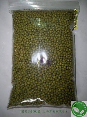 芽菜專用油綠豆種子