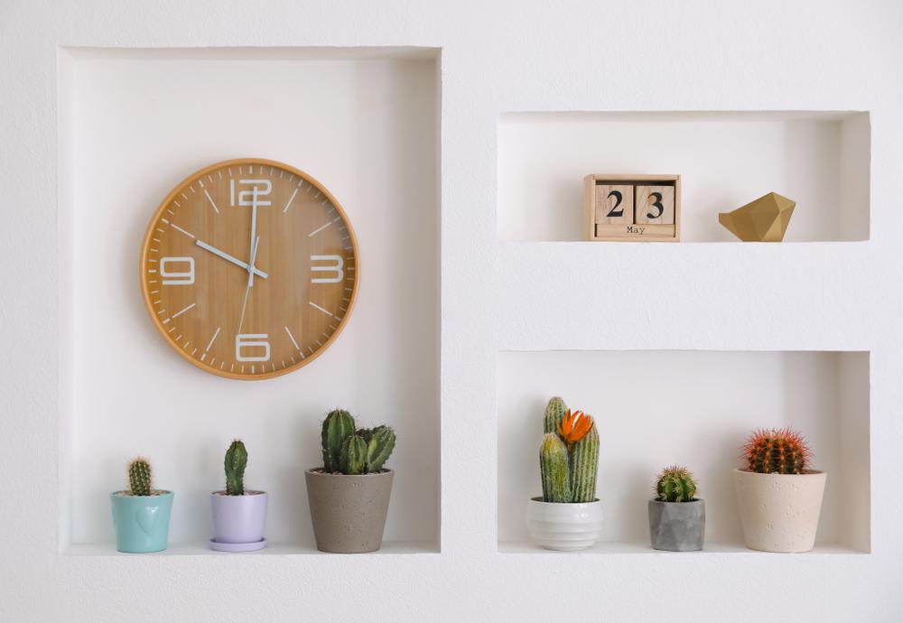 Uma prateleira retangular com plantas e um relógio.