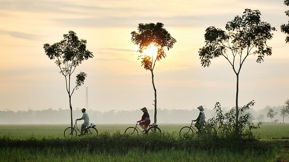 bicycle-riding-947336_960_720.jpg
