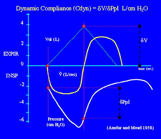 Dynamic compliance measured during tidal breathing - the change in volume is divided by the change in pressure at points of zero flow, as in the beginning and end of inspiration.