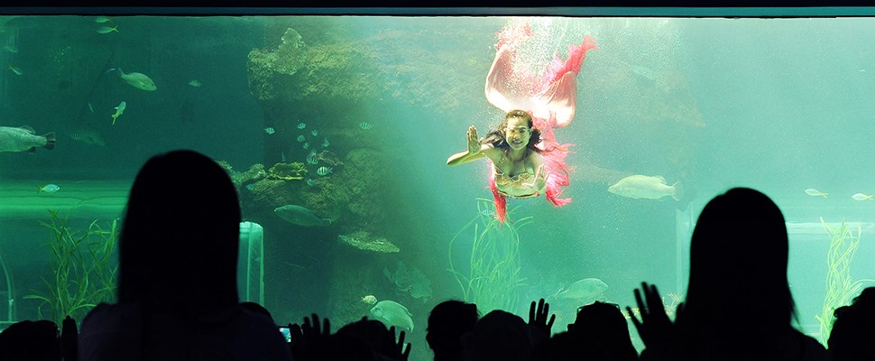 Vinpearl-Land-Nha-Trang-mermaids-show