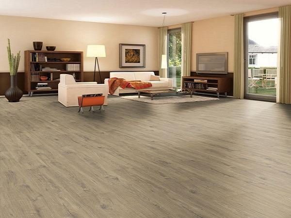 Đơn vị nào cung cấp sàn gỗ chất lượng, hiệu quả, giá tốt?
