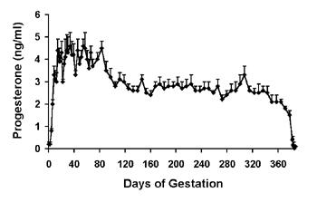 Concentraciones promedio (+sem) de progesterona sérica en camellas gestantes.