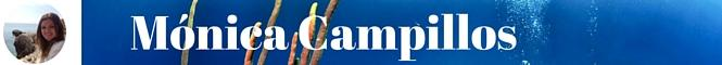 Z:\AREA DE TRABAJO\PROYECTOS\EMPLEAVERDE\FSE 2014-2020\FSE\7. REV\2_Difusión\2_Noticias\1_ReV\20062016_BecaReV\2_Carteles\4BecasReV\M. Campillos.jpg