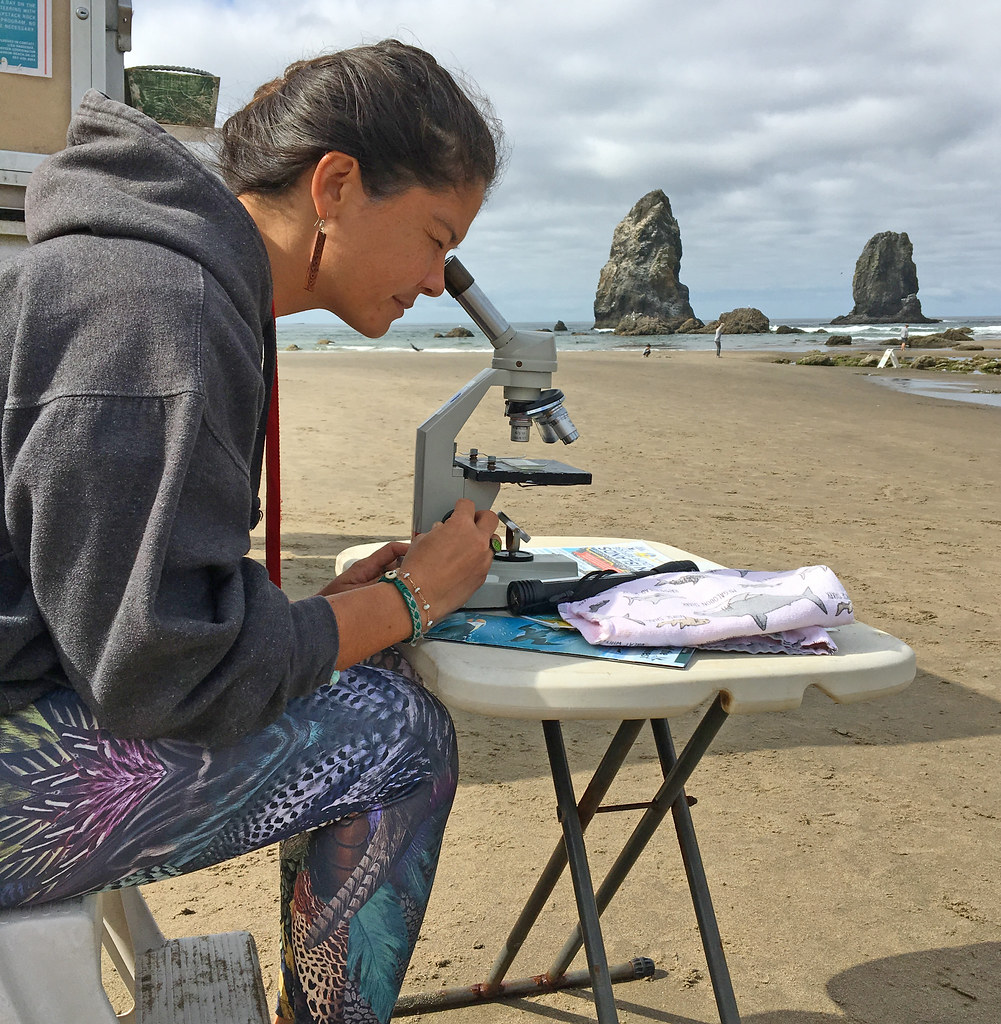 A young girl uses a microscope to inspect slides right on a sandy beach. She looks like a high school student participating in an on-site STEM internship for high school students interested in marine biology.
