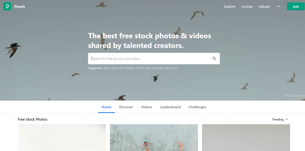 pexels stock images. royalty free images- blogging tools