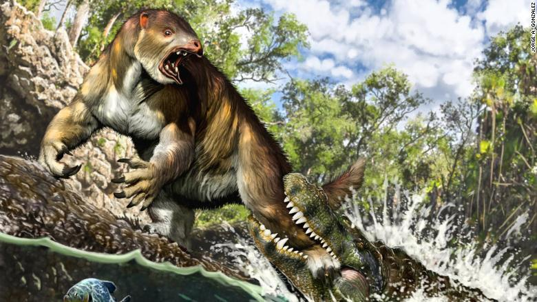 This artist's illustration shows a young Purussaurus attacking a ground sloth in Amazonia 13 million years ago.