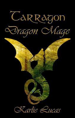 https://2.bp.blogspot.com/-Rd6RZ7NJW00/WT5jxDxcFrI/AAAAAAAAPBM/JEvyikyWA5o87gB7_zEPhzejBVeS4jZDwCLcB/s400/dragonmagecover.jpg