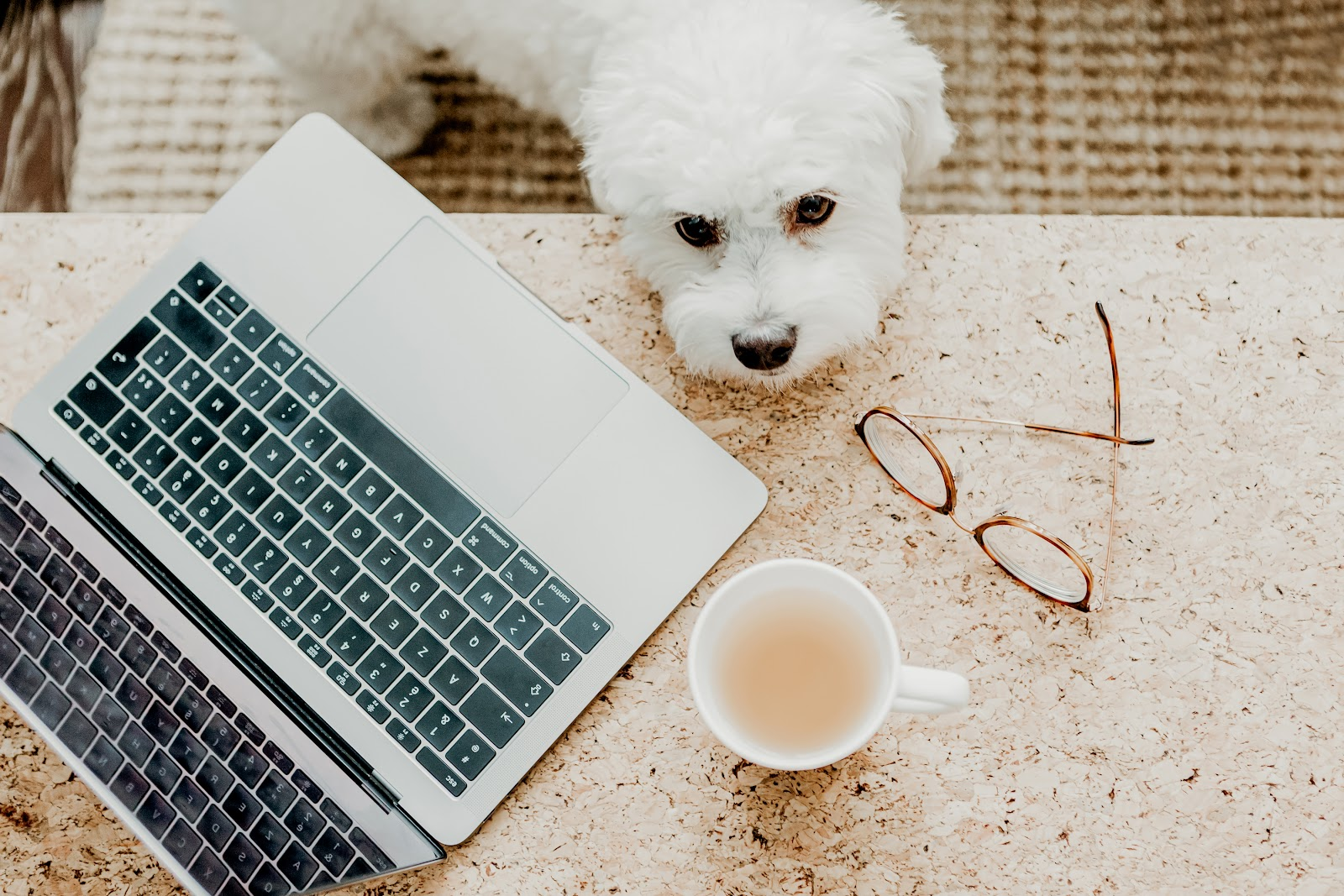 Need to work from home and thinking about freelancing online? Here are 5 simple steps you can take to start a freelancing side-hustle online!