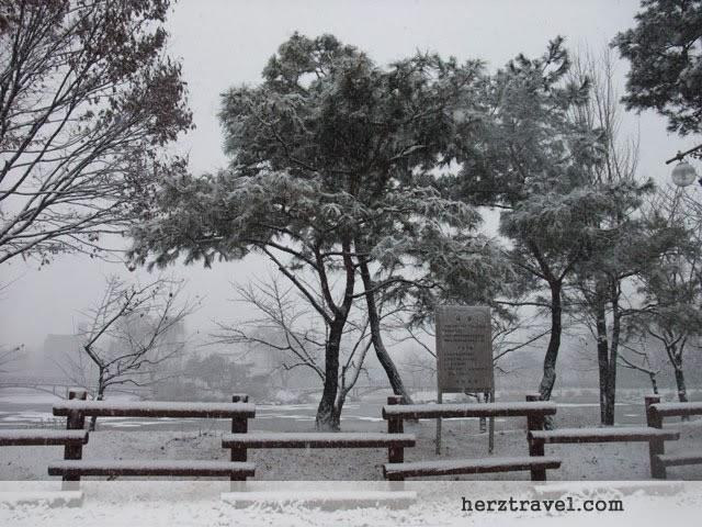 Korean Snow