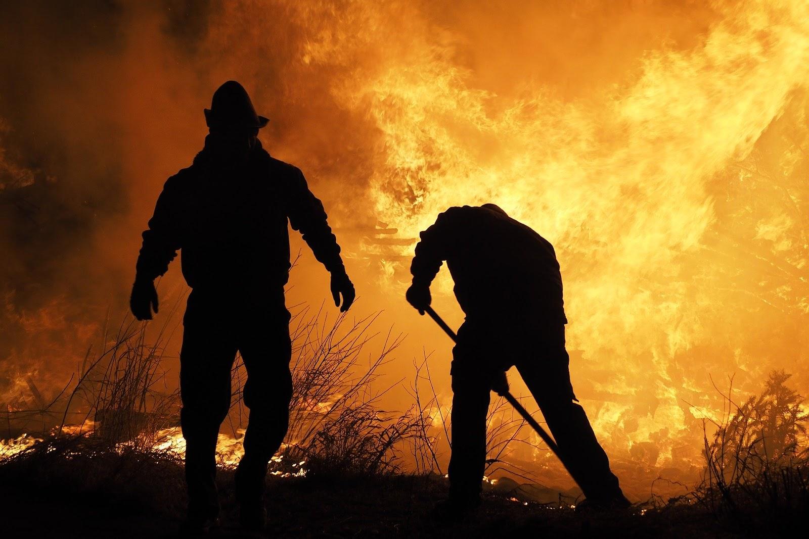 Sydney vive momentos de tensão, com alarmes de fumaça tóxica tocando por toda a cidade, causados pelos incêndios florestais que acometem o leste da Austrália há meses.