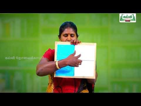 5th Maths Bridge Course பின்னங்கள் அறிமுகம், சமான பின்னங்கள் நாள் 1&2 Kalvi TV