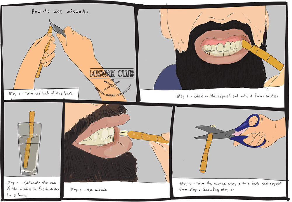 The Easy Guide to Using a Miswak