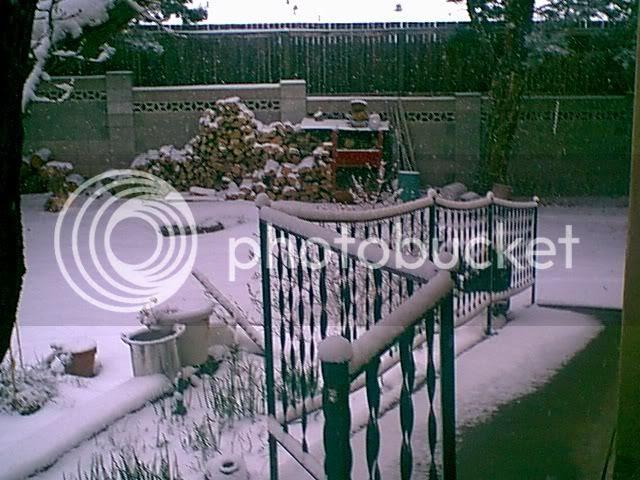 photo snowfence.jpg
