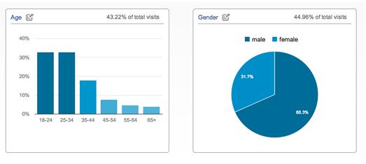 Google Analytics Audience Report_Oct2013