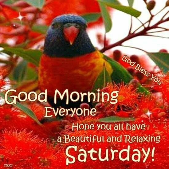 Good Morning God Bless Happy Saturday Quote Pictures Photos And
