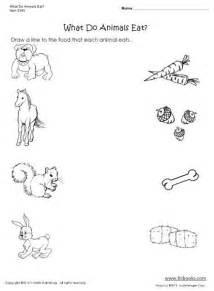 coloring pages kindergarten science pinterest