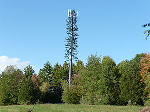 Cell phone tower cleverly disguised to look li...