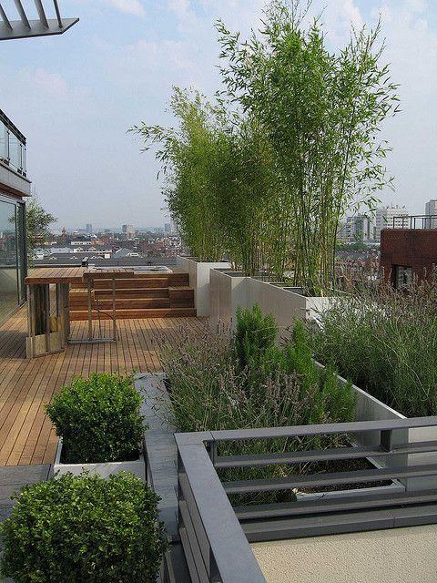 Roof Terrace in London by Modular Garden