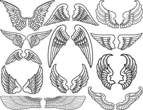 Angel Wings Drawing At Getdrawingscom Free For Personal Use Angel