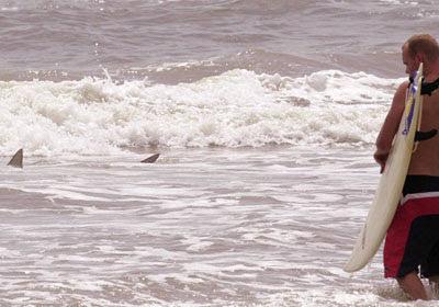 surf30_playa_tiburones