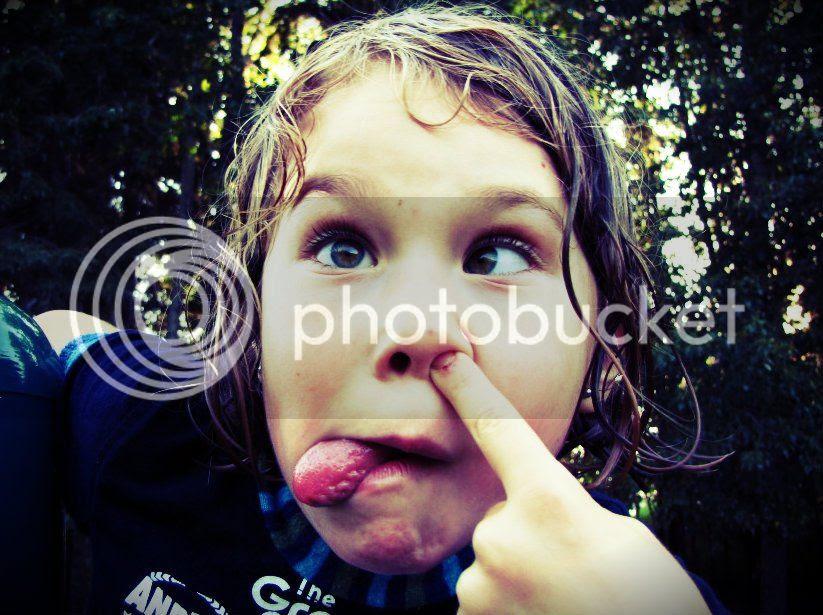 photo 547832_443503765669804_1109736794_n.jpg