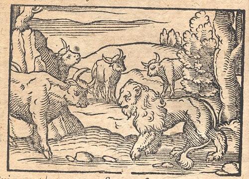 Leo et Tauri - Osius