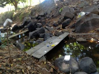 Riacho onde os trabalhadores se banhavam (Foto: Divulgação / MTE)