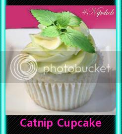 nip cupcake