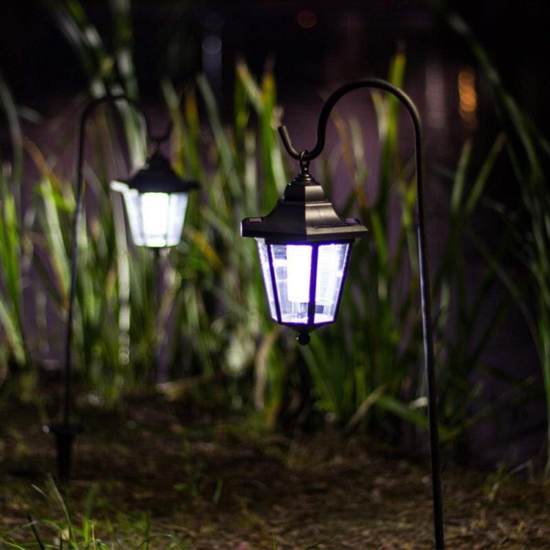 Hanging Solar Lanterns Wayfair