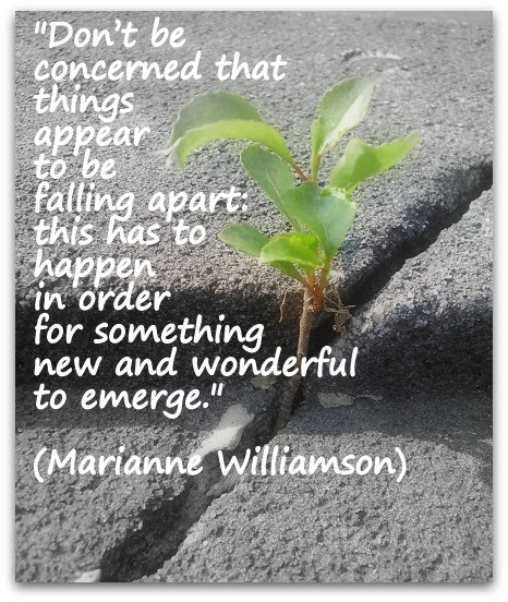 Marianne Williamson Coaching Confidence