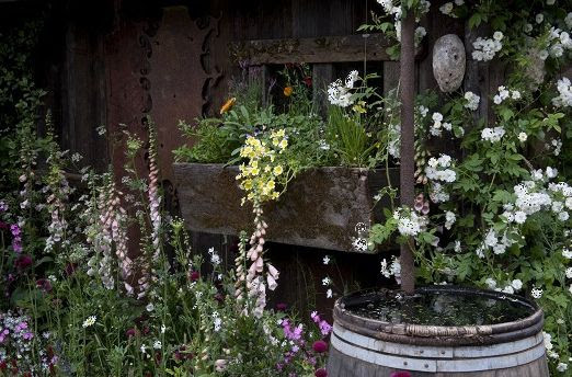jardín campestre