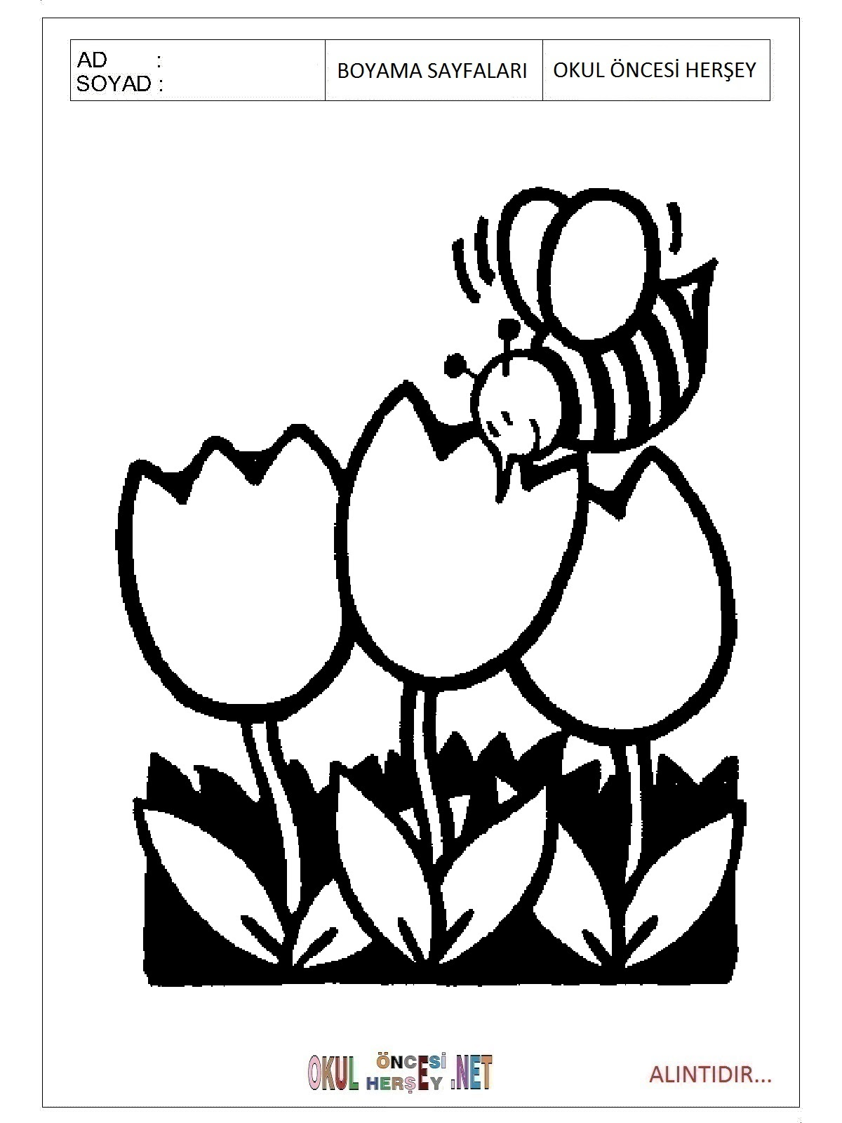Arı Boyama Sayfaları
