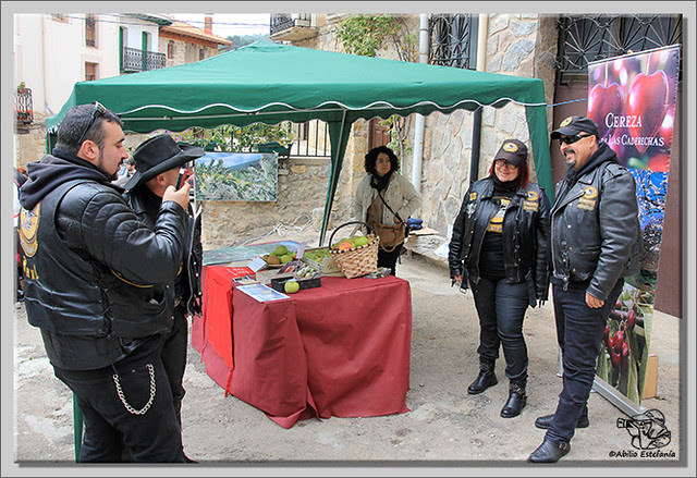 Feria de la Reineta en Cantabrana (3)
