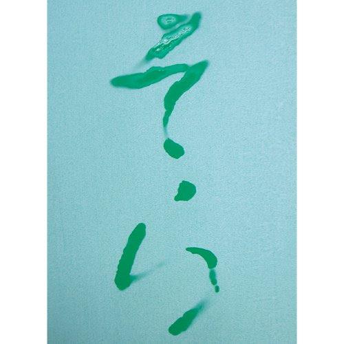 呉竹 水でお習字・半紙
