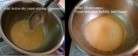 yeast proofing