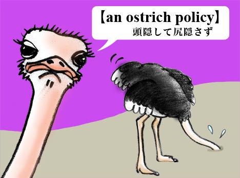 オッチョコリーナの英語教室an Ostrich Policy現実逃避する
