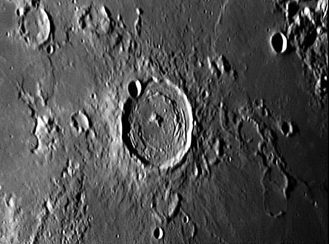 Taruntius-Leech.jpg
