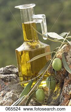 Banco de Imagem - azeitona, óleo,  azeitona, ramo.  fotosearch - busca  de fotos, imagens  e clipart