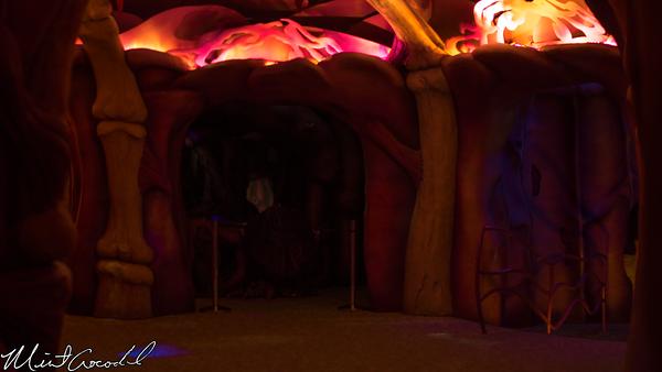 Disneyland Resort,