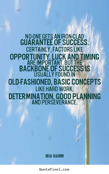 Success Quotes No One Gets An Iron Clad Guarantee Of Success