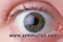 AntiMullah.com
