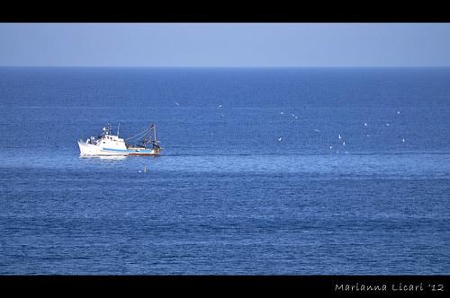Getta le tue reti...buona pesca ci sara' by via_parata