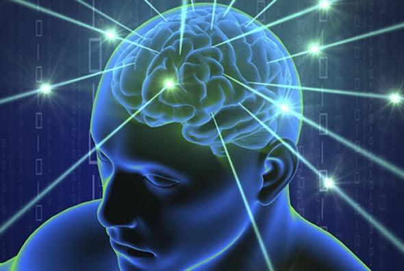 brain visualization