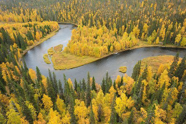 kitkajoki-river-oulanka-finland_18562_600x450.jpg