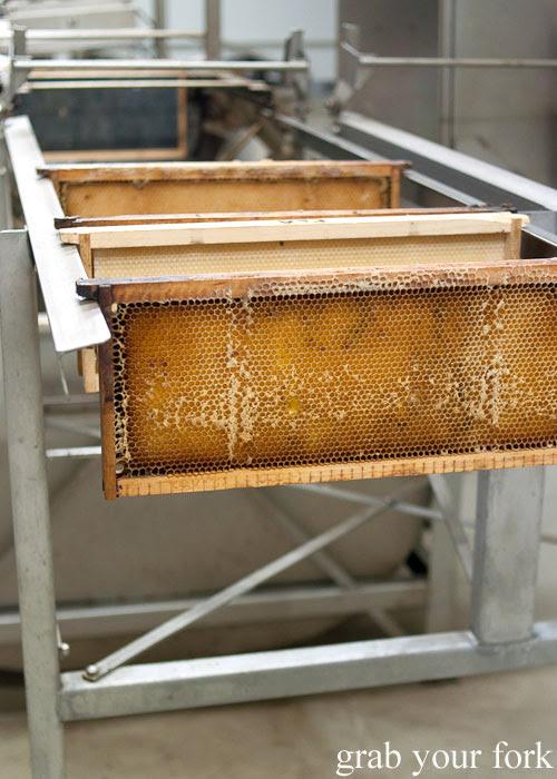 Racks of honey on the extractor at Clifford's Honey Farm, Kangaroo Island