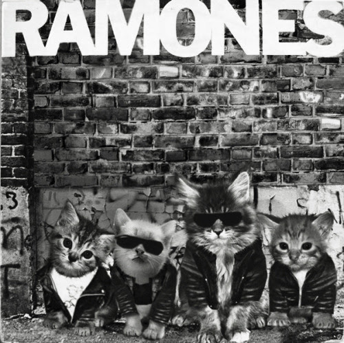 The RaMEOWnes