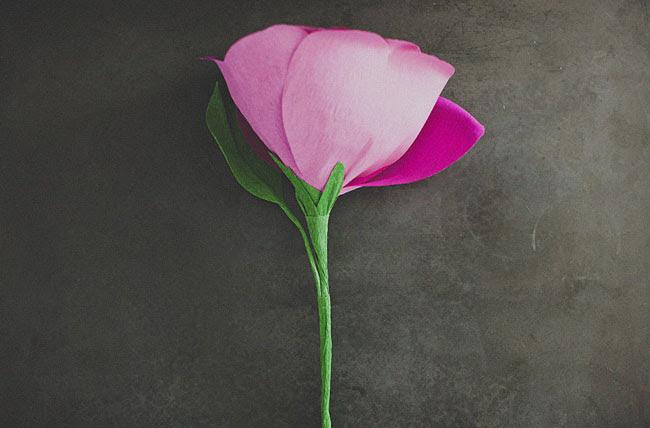 diy-gigante-papel-rosa-15